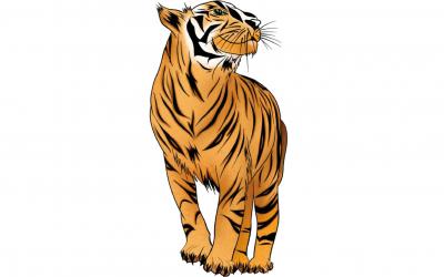 Astrología China: Características del signo Tigre
