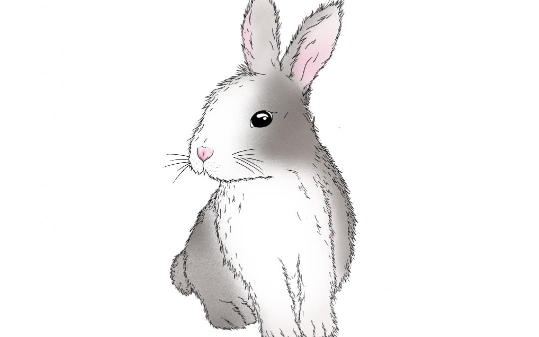 Astrología China: Características del signo Conejo
