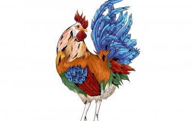 Astrología China: Características del signo Gallo