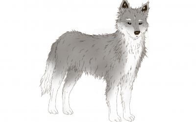Astrología China: Características del signo Perro