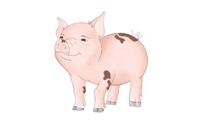 Astrología China: Características del signo Cerdo