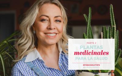 Plantas medicinales para la Salud II