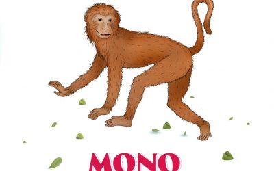 Mono – Rasgos y características para hombre y mujer.